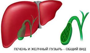 Лечение перегиба желчного пузыря лекарства