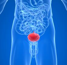 Воспаление семенных пузырьков симптомы диагностика и принципы лечения
